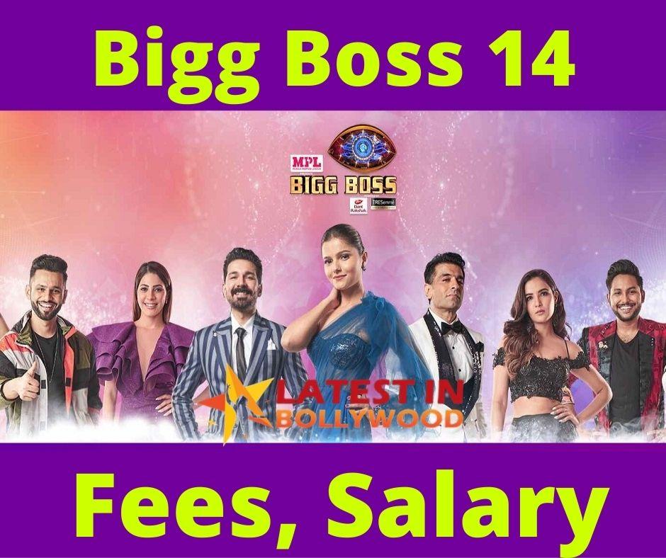 BB 14 Contestant Fees